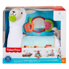 Fisher Price Grow with me Tummy Time Llama